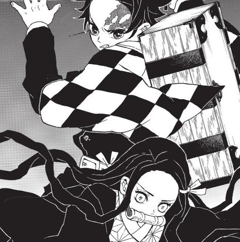 Demon Slayer T.2 - Koyoharu GOTOUGE - Panini - 2021